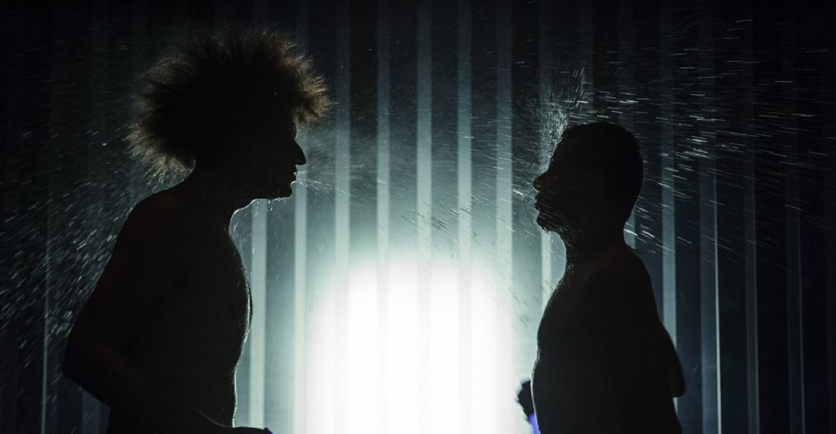 Ginds, tussen de netels (Dimitri Verhulst) door Theater Pact Aalst